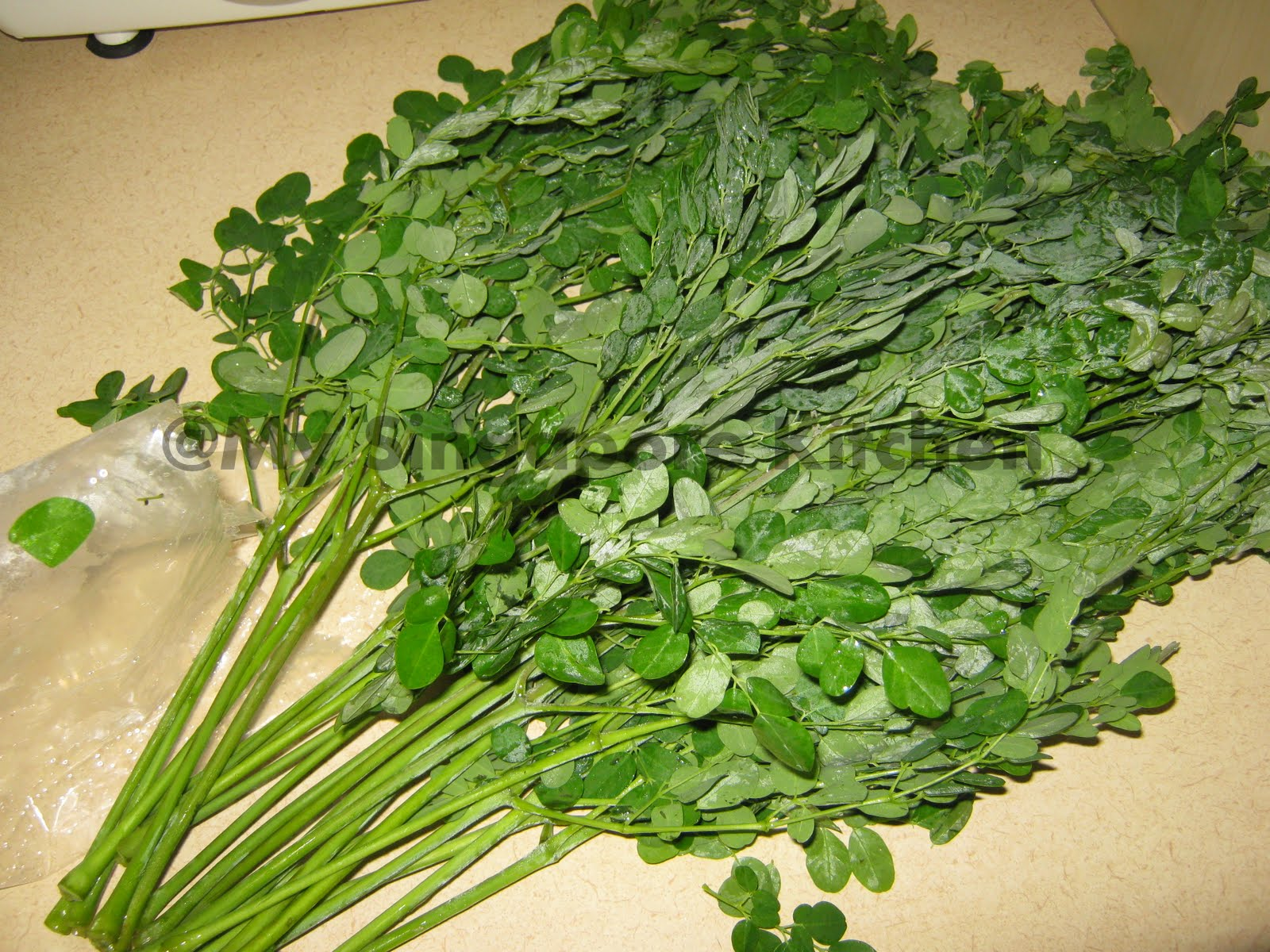 Moringa Leaves / Thoran Mix (Malaysian)